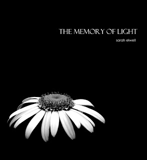 The Memory of Light by Sarah Elwell