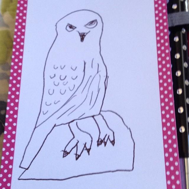 Hawk by Rilla