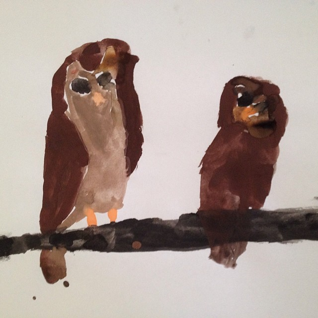 rilla's owls