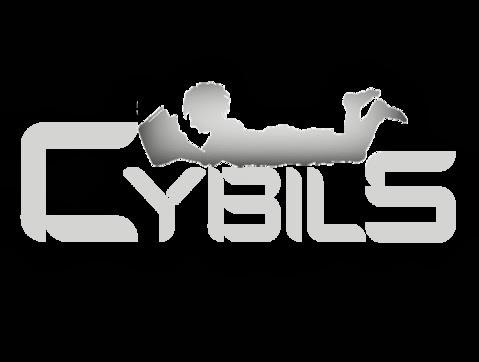 Cybils 2014