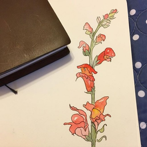 watercolor snapdragons