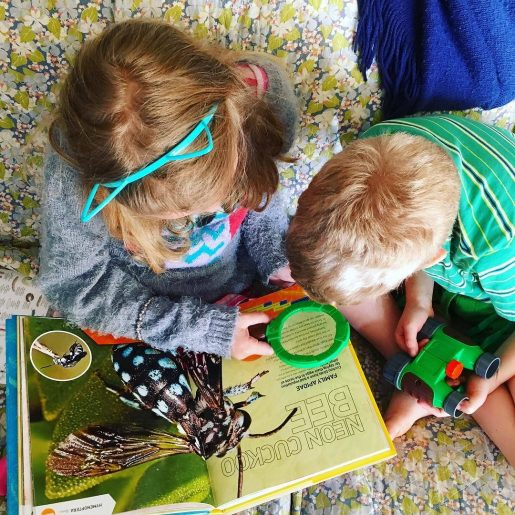 Rilla and Huck and a bug book