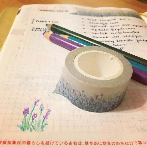 sketching washi