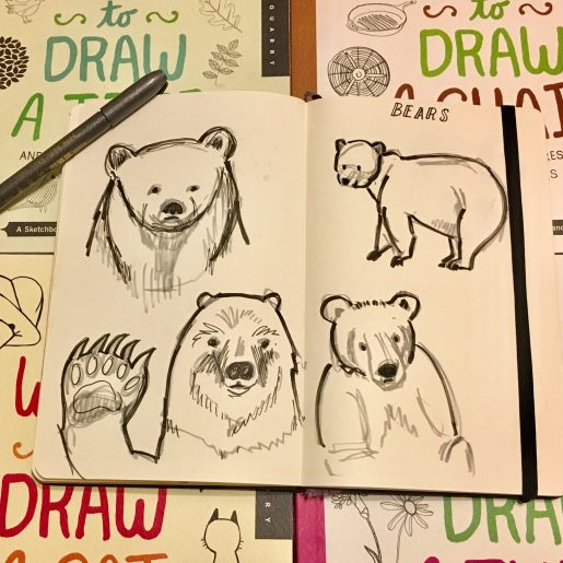 sketchbook bears
