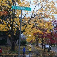 kids in rain slickers under autumn trees
