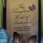 Booknotes: The Dangerous World of Butterflies