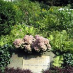 Shakespeare Garden by wallyg