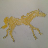 Cantering Horse, by Rilla